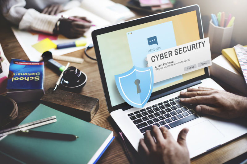 cyber security and fraud risk